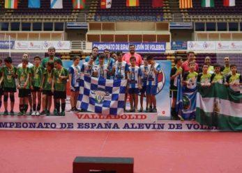 Campeones de España Alevín masculino
