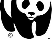 WWF pide al Cabildo que se pronuncie sobre la creación del primer Parque Nacional 100% marino en El Hierro