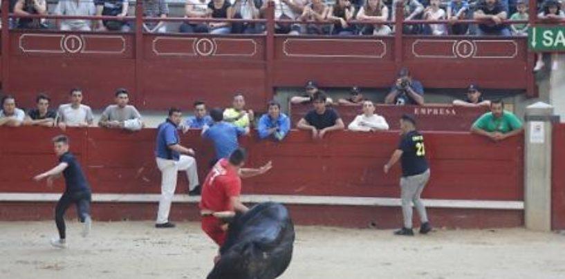 Dos heridos graves por asta de toro en la suelta de reses de Leganés