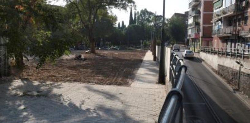 El Ayuntamiento ampliará la acera del Paseo de Colón