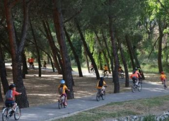El Ayuntamiento y entidades locales se unen para celebrar la Semana del Medio Ambiente, un programa con 10 días de actividades