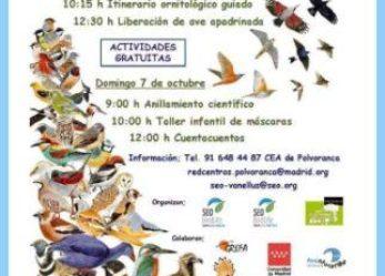 Día Mundial de las Aves 6 y 7 de octubre 2018
