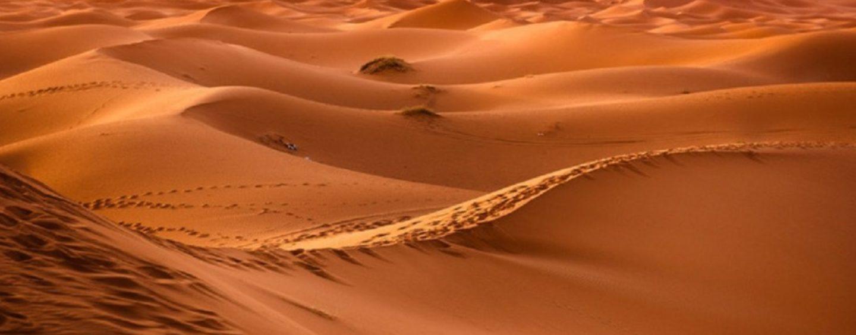 Ecos del Desierto 30 de Enero de 2020