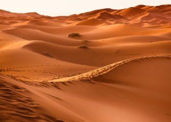 Ecos del Desierto 27 de Noviembre de 2019