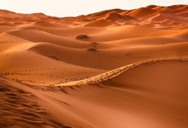 Ecos del Desierto 9 de Enero de 2020