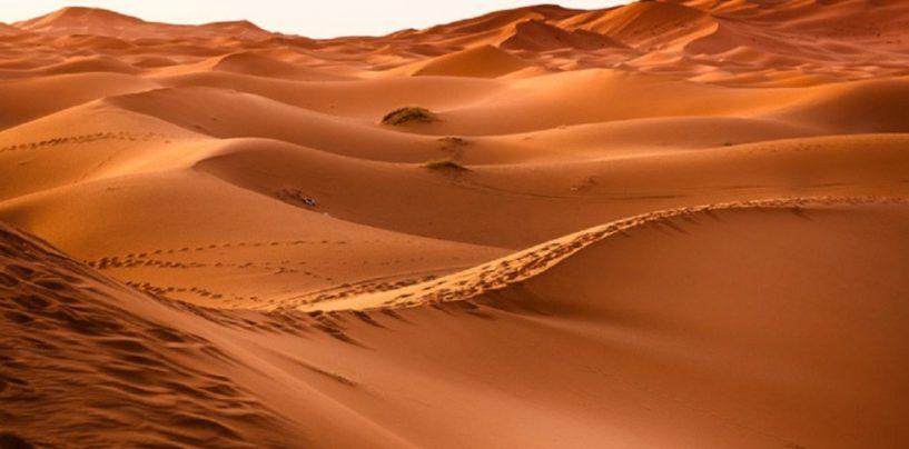 Ecos del Desierto 11 de Abril de 2019