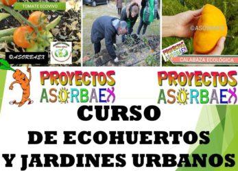 CURSOS DE ALEMÁN Y CURSO DE ECOHUERTAS Y JARDINES URBANOS AGROECO