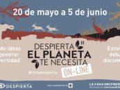 11ª edición del #CicloDespierta