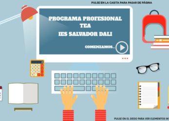 Programa Profesional TEA: IES Salvador Dalí