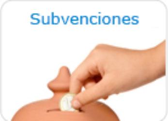 Concesión subvenciones a Entidades sin ánimo de lucro