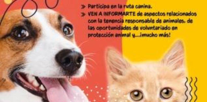 El Ayuntamiento de Leganés organiza una jornada de adopción animal dentro de la campaña de fomento de la tenencia responsable