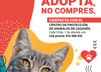 El Ayuntamiento de Leganés pone en marcha una campaña para fomentar la adopción de animales del Centro de Protección Animal