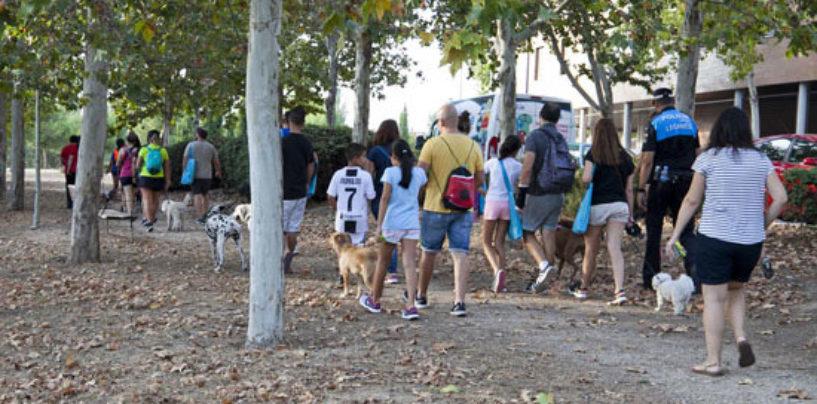 El Centro de Protección Animal de Leganés participa en un estudio sobre la incidencia de la COVID19 en los animales domésticos