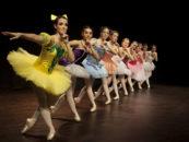 Los leganenses contarán este verano con una oferta de 18 cursos  y talleres gracias al programa cultural Verano Divertido