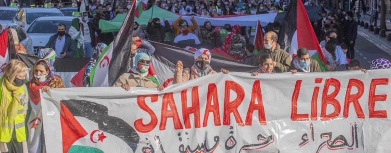 Compartiendo Infierno con los Saharauis